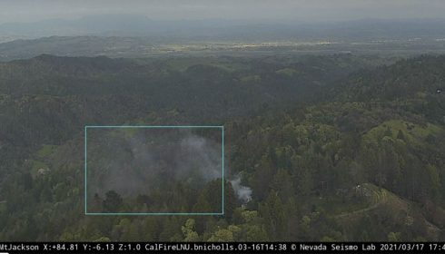 Forest fire detection