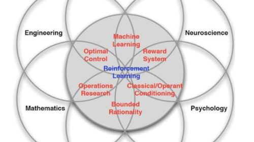 The future with Reinforcement Learning